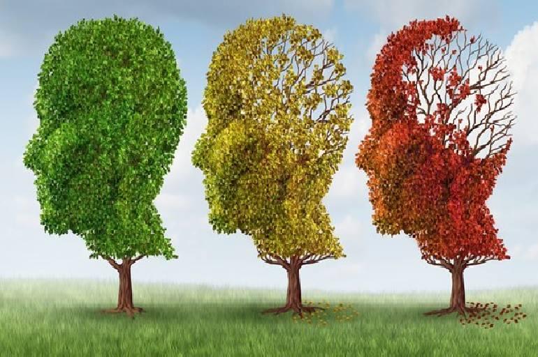 Olvidos cotidianos: ¿demencia, pseudodemencia o simplemente despistes?
