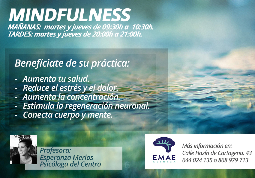 mindfulness cartel