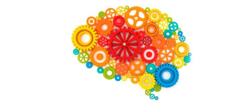 ¿Qué es la Neuropsicología Infantil?